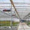 газовый нагреватель для растениеводства