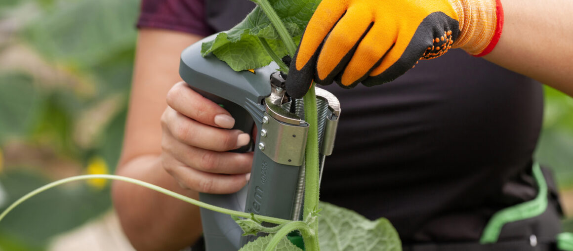 Инновационная система подвязывания растений TomSystem